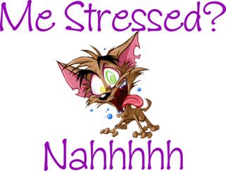 Bildresultat för stressar